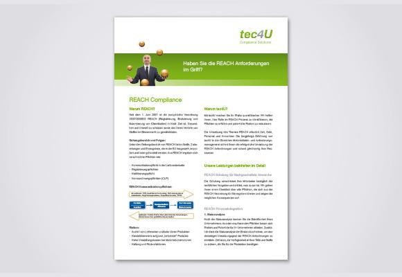 Download Flyer REACH